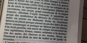 texte de Kléber HAEDENS - les cahiers rouges -une histoire de la littérature française